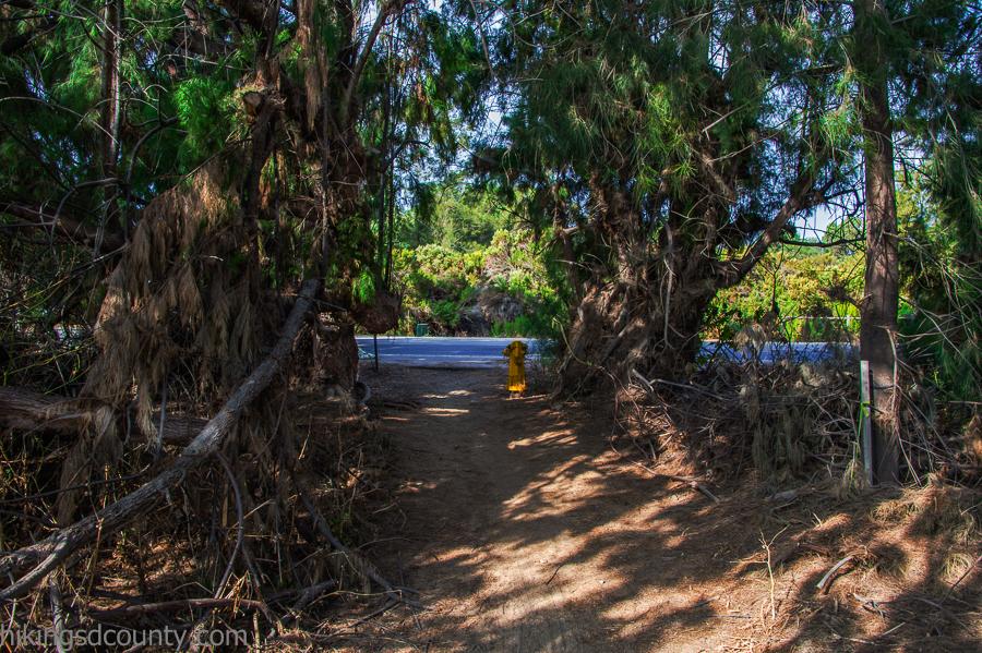 The trail crosses Hollister Street