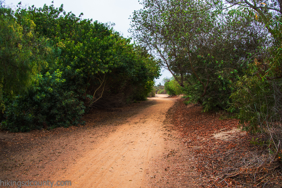 The trail at Tijuana River Valley Regional Park is wide and smooth