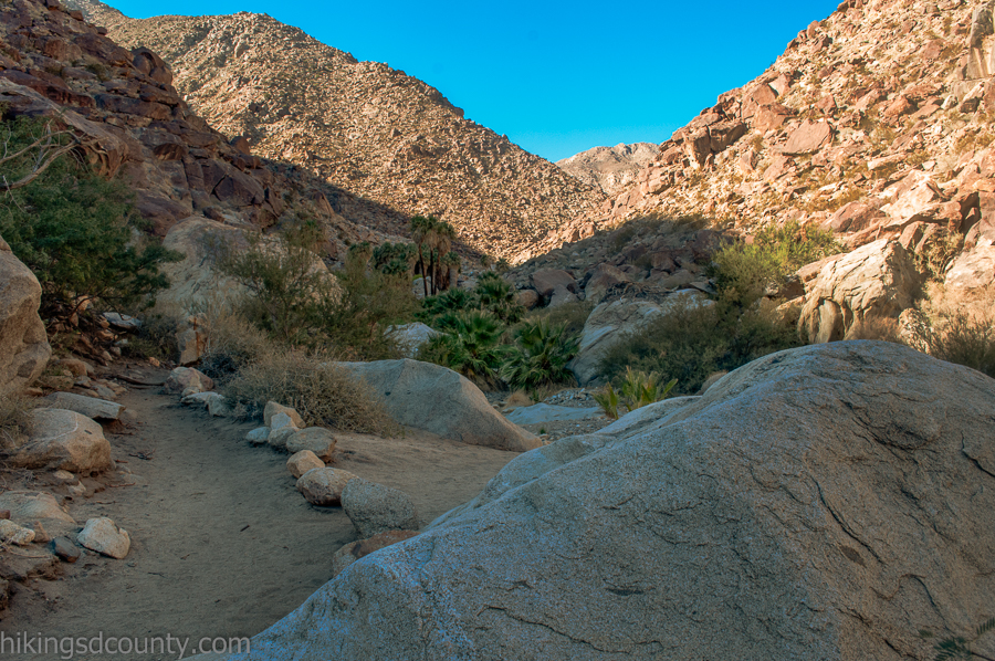 Looking up the canyon to the oasis