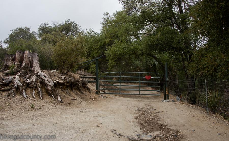Corte madera mountain hiking san diego county - Maderas al corte ...