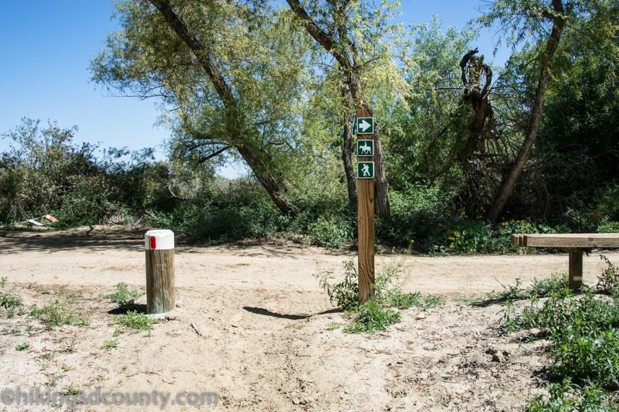 20160331_DSC0303-Tijuana_River_Valley