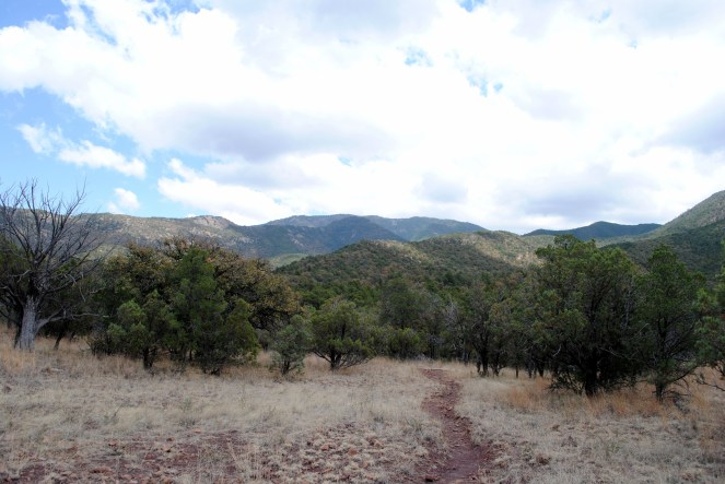 Much different landscape.