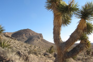 img 0955 Blue Diamond Overlook (Las Vegas)