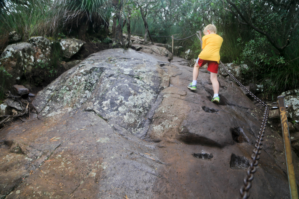 Chains on the track to the Mount Warning summit