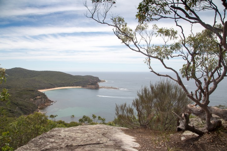 mg 8699 lr Guide to Bouddi National Park