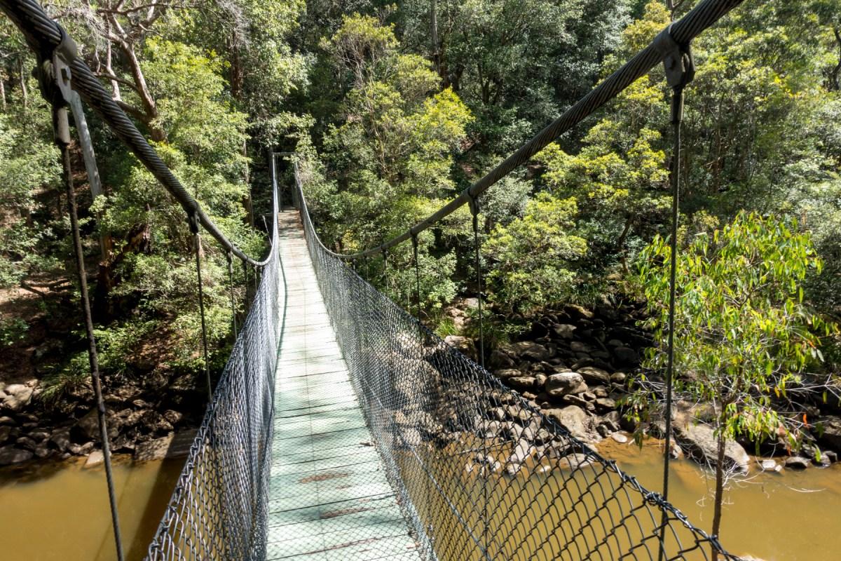 Phil Houghton Bridgeon Girrakool Loop Walk