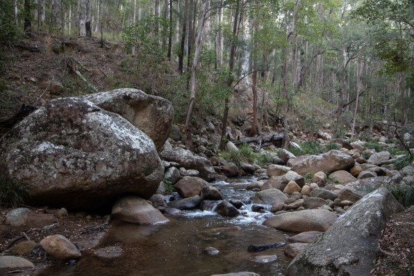 Cronn Creek behind the camp site