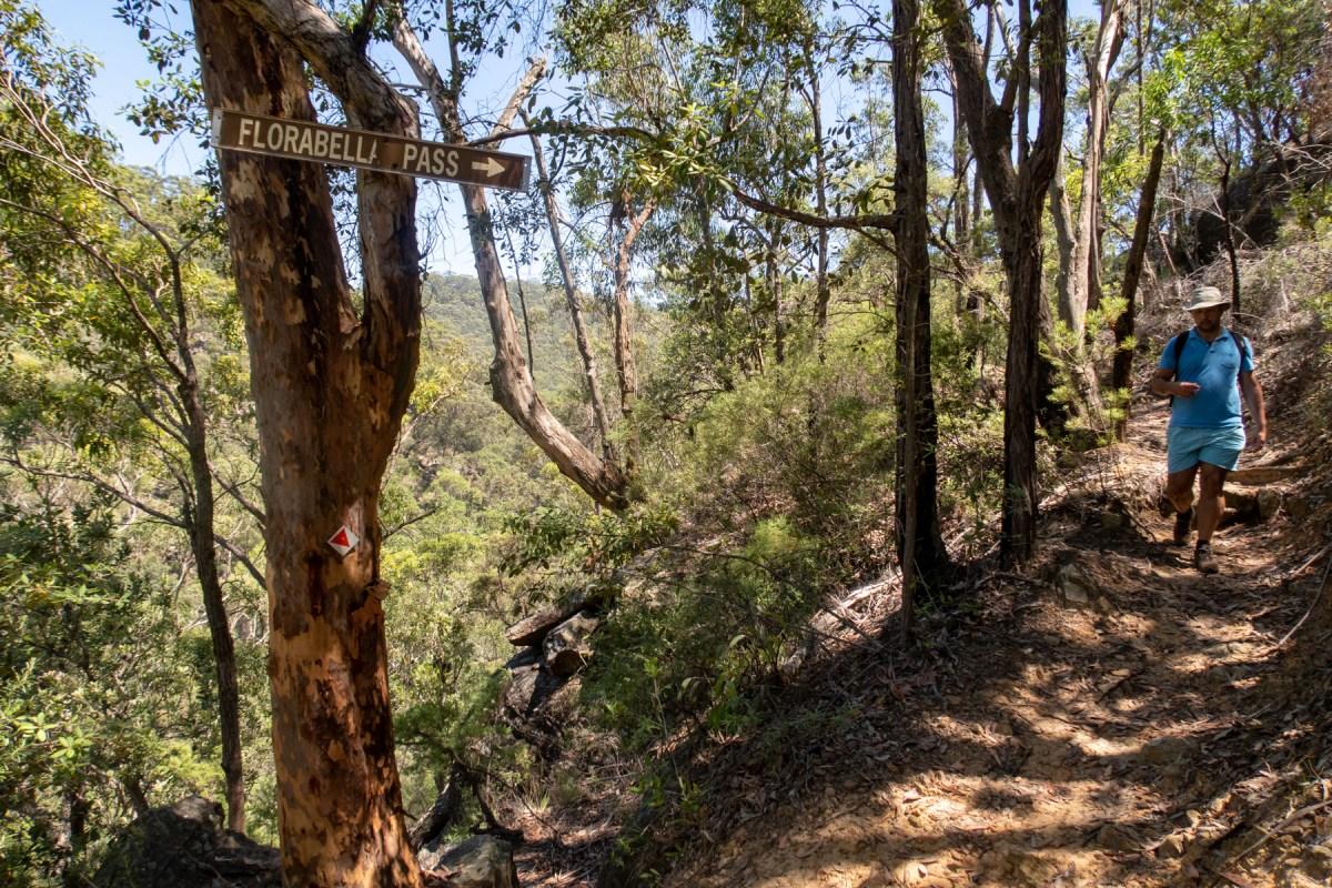 Path down to Glenbrook Creek