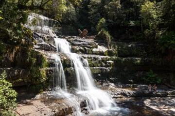 img 8953 lr Hiking to Liffey Falls via the Upper Track