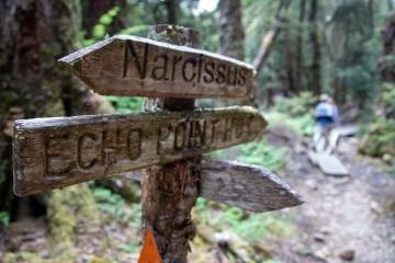 img 9049 lr Narcissus Hut, Lake St Clair