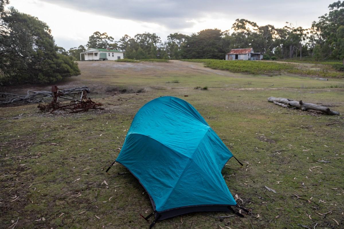 img 9620 lr An extended Maria Island bushwalk