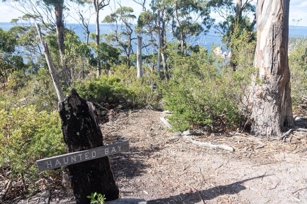 img 9656 lr An extended Maria Island bushwalk