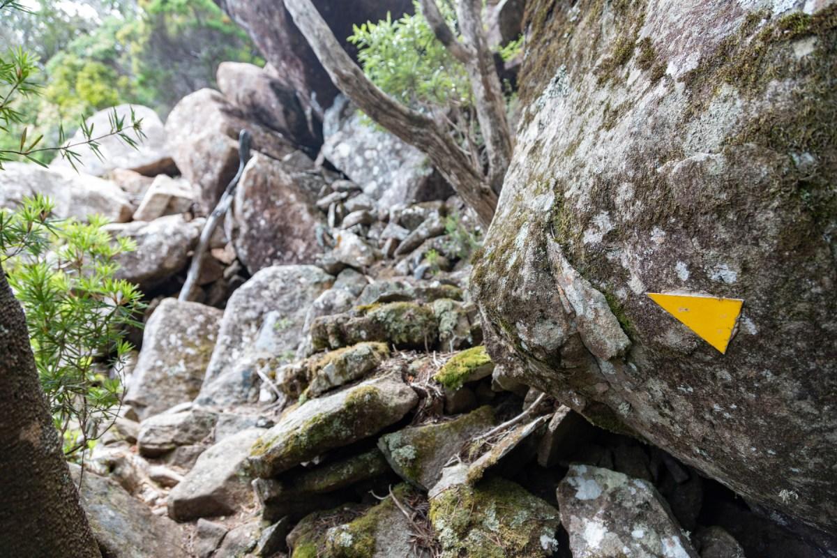img 9788 lr Mount Maria hike (Maria Island)