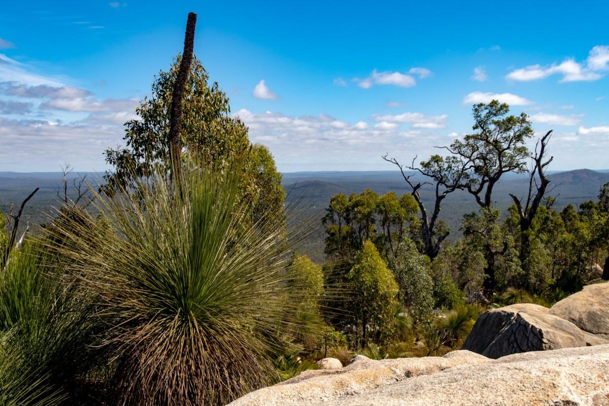 Mount Cooke summit