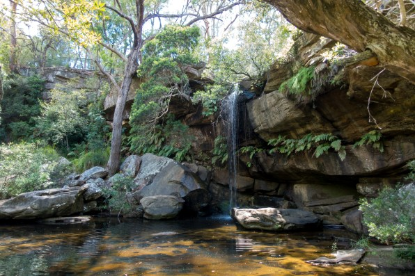 A cascade and natural pool in Piles Creek