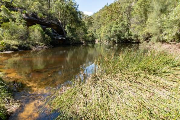 Duck Hole on Glenbrook Creek