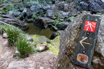 img 6947 lr Hiking Trails
