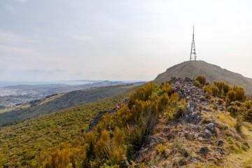 img 0647 lr Mount Cargill and Organ Pipes (Dunedin)