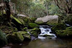 Spring Gully Creek cascades