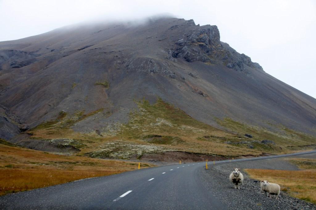 mg 8317 lrp A circuit around Iceland