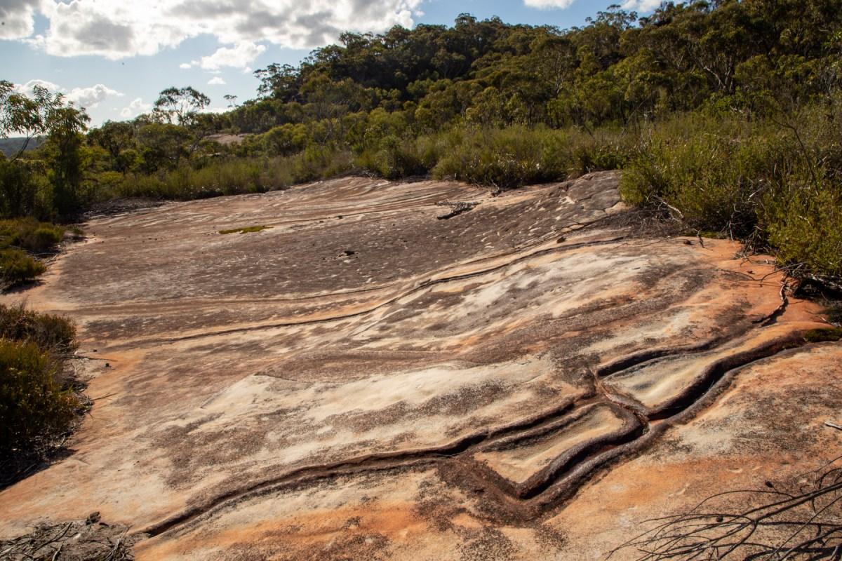 img 4273 lr Mount Murray Anderson Aboriginal engraving sites