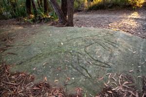 img 4789 lr 1 Indigenous Rock Art