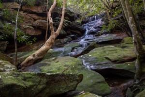 img 6103 lr Waterfalls Search