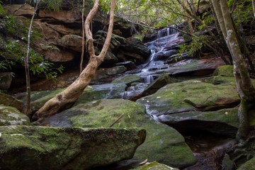 img 6103 lr Unnamed Falls (Middle Harbour Creek)