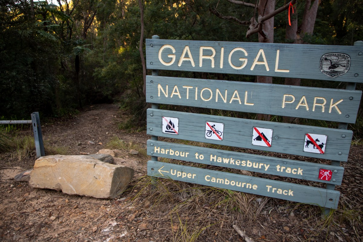 img 6604 lr Guide to Garigal National Park