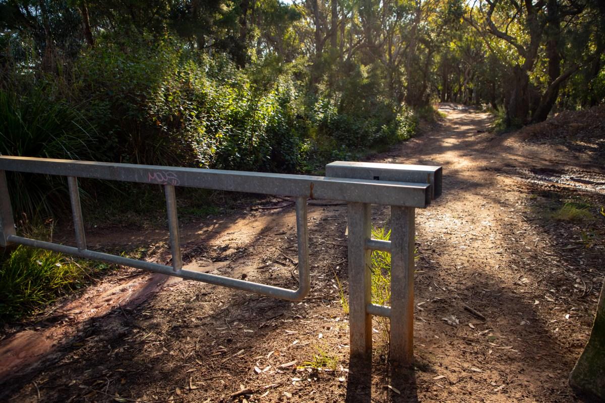 img 6644 lr Heath Trail and Bare Creek Loop (Garigal NP)