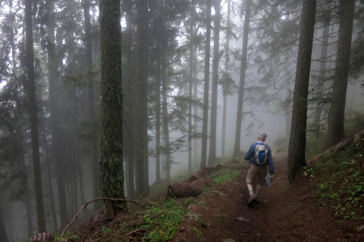 Start of the walk below Gorge du Dailley