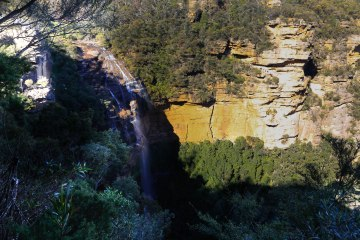 mg 4602 1 Overcliff-Undercliff Track (Blue Mountains)
