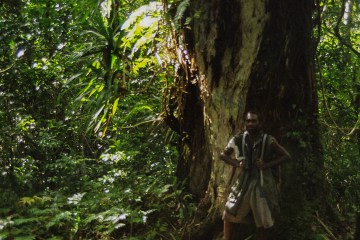 02460021 lr Efate Jungle Trek