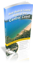 9781921606854 001 Guide to Bouddi National Park
