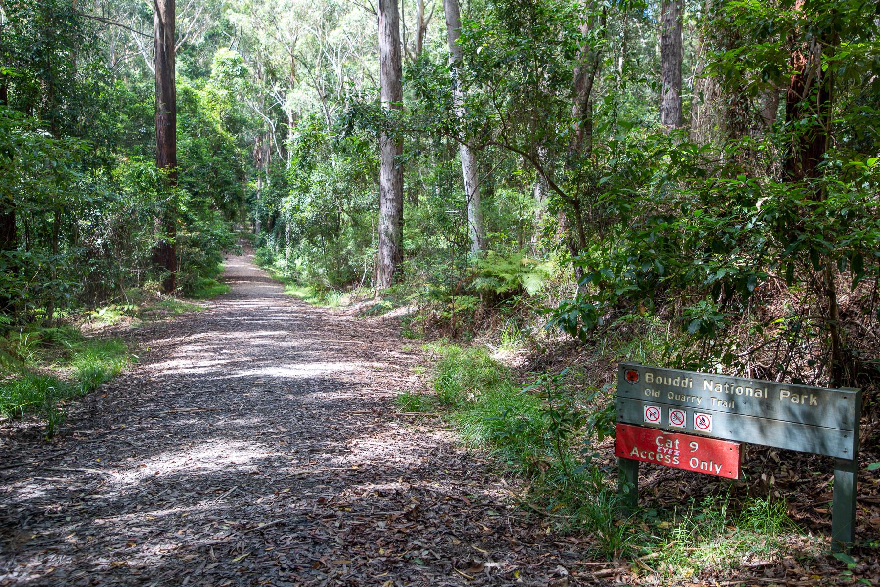 awat6117 lr Guide to Bouddi National Park