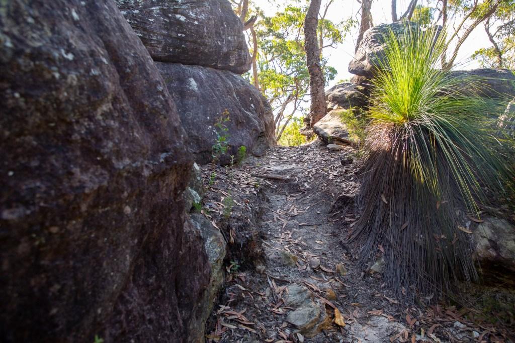 AWAT1527 LR Gundah Ridge Track
