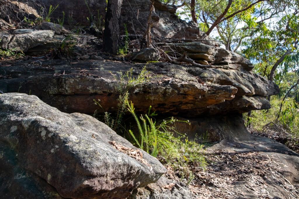 AWAT1530 LR Gundah Ridge Track