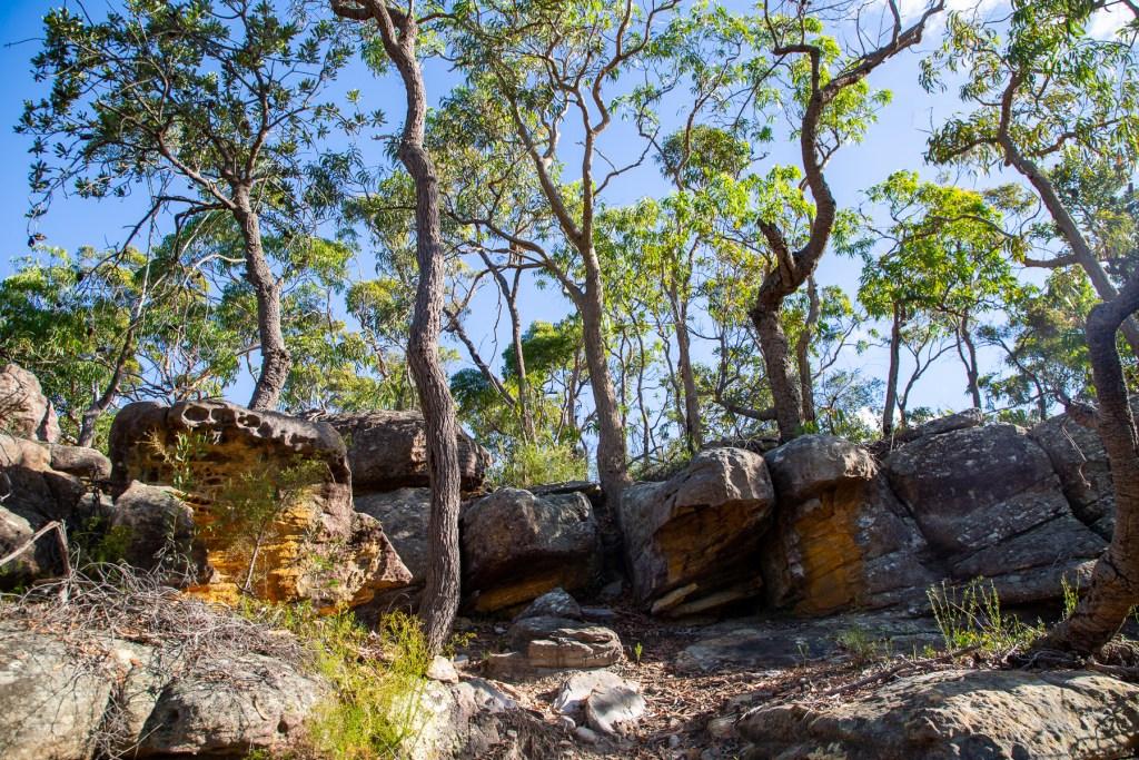 AWAT1541 LR Gundah Ridge Track
