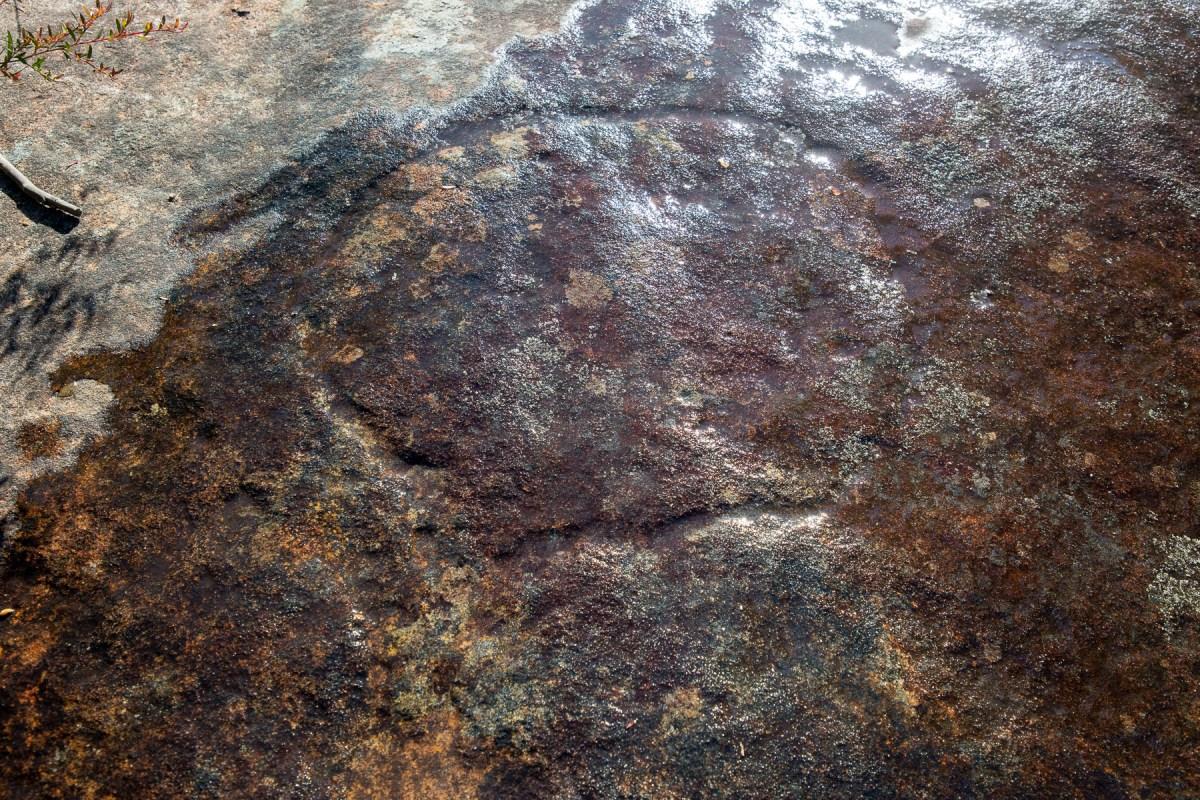 awat6248 lr America Bay engraving sites