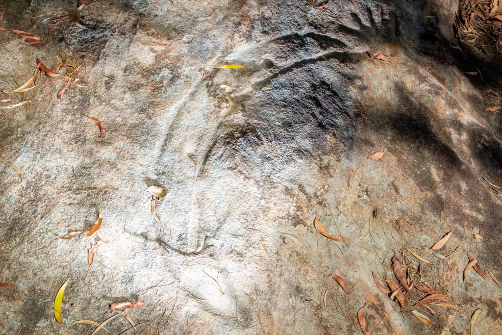 AWAT1463 LR Mt Ku-ring-gai Aboriginal site