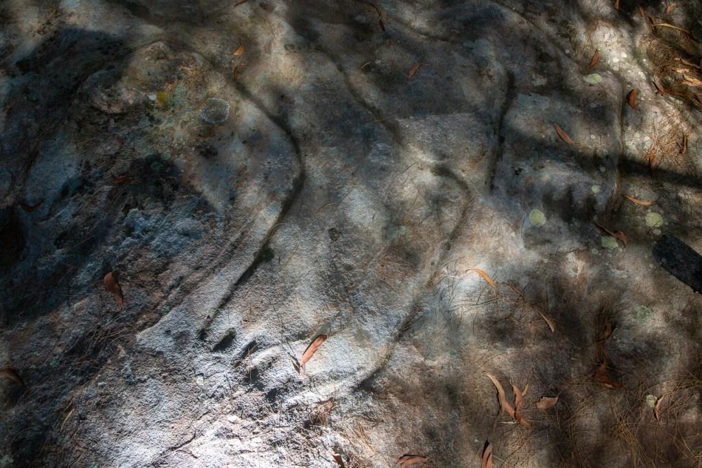 AWAT1497 LR Mt Ku-ring-gai Aboriginal site