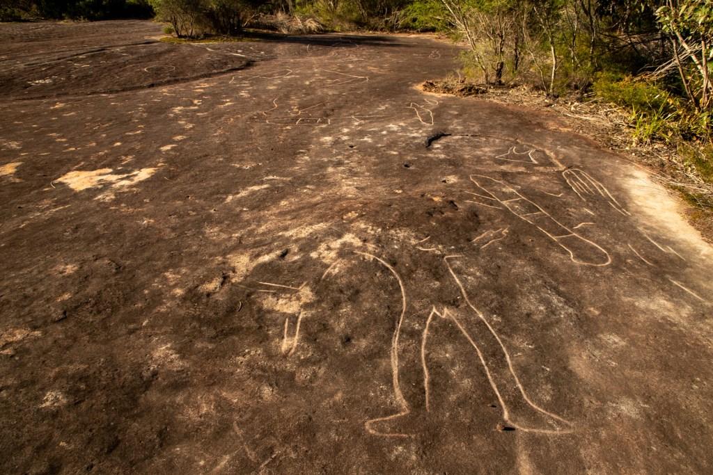 IMG 5597 LR Bantry Bay Aboriginal Site