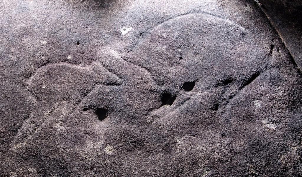 AWAT3980 LR Basin Aboriginal Site
