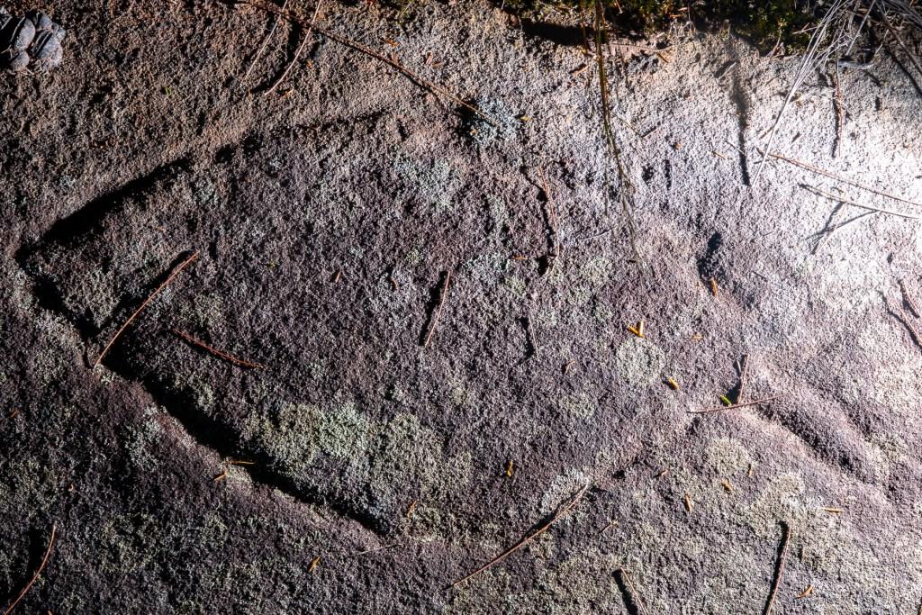 AWAT4400 LR Basin and Mackerel Track Aboriginal sites