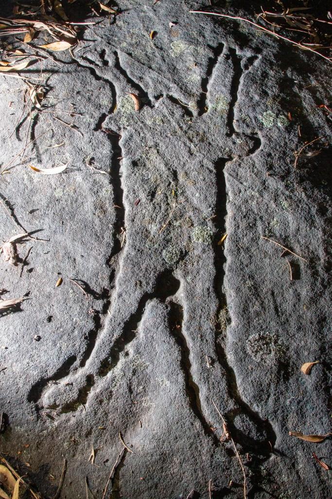 AWAT4815 LR Terrey Hills Aboriginal Engravings