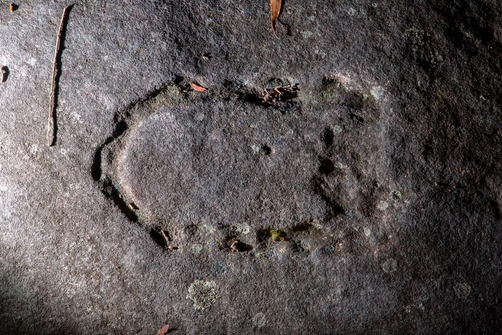 AWAT4816 LR Terrey Hills Aboriginal Engravings