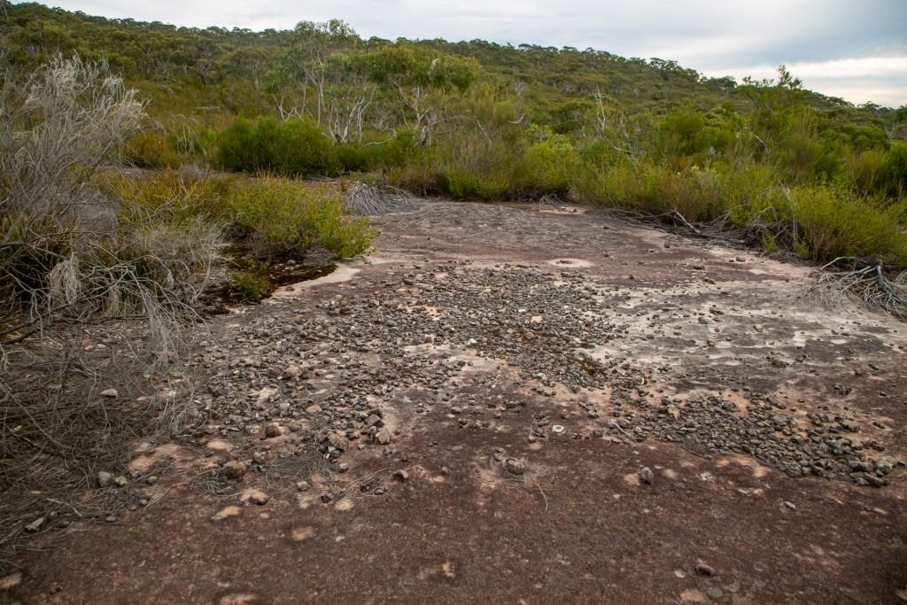AWAT5084 LR Topham Trail Emu engraving