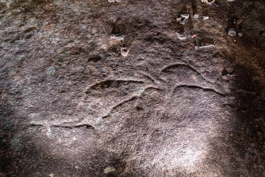 AWAT6546 LR Myall Trail Aboriginal sites (Ku-ring-gai Chase)