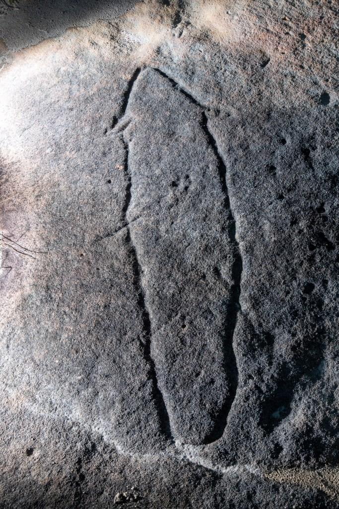 AWAT7142 LR Resolute Track Eel engravings