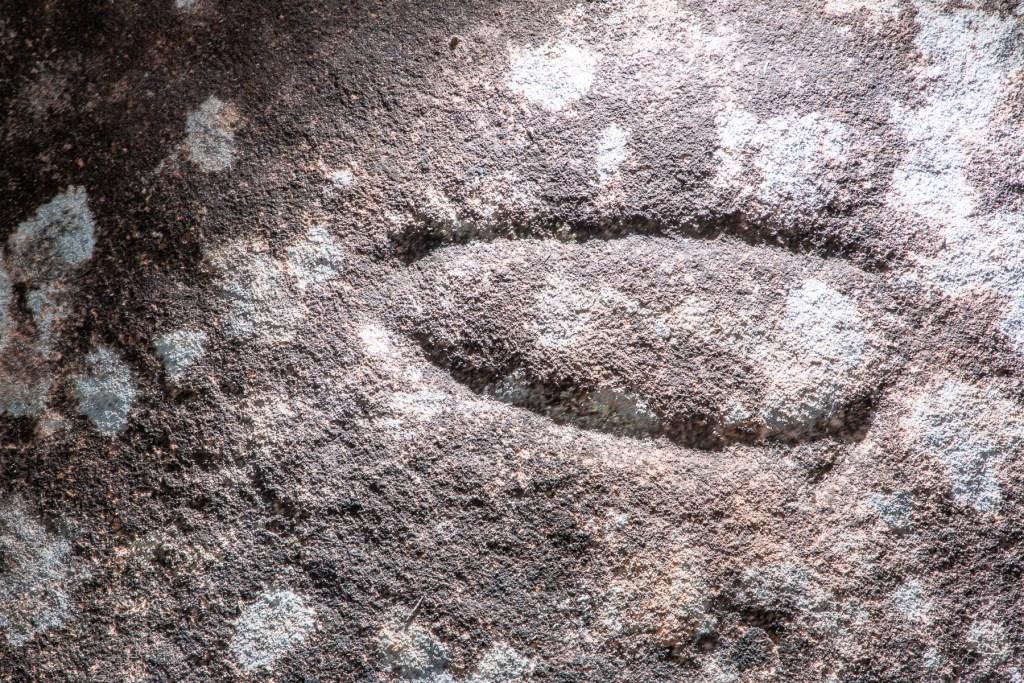 AWAT9858 LR Resolute Track Aboriginal engraving sites